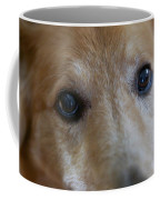 Close Up Of A Pet Dogs Eyes Coffee Mug