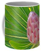 Close Up Of A Protea In Bud Coffee Mug