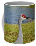Close Up Of A Sandhill Crane Coffee Mug