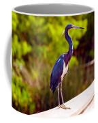 Close-up Of An Blue Egret, Boynton Coffee Mug