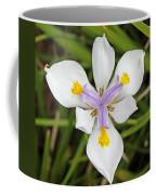 Close Up Of An Iris Coffee Mug