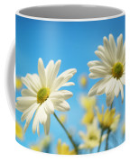 Close-up Of Daisies Against A Blue Coffee Mug