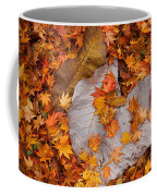 Close-up Of Fallen Maple Leaves Coffee Mug