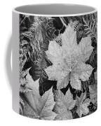 Close Up Of Leaves Coffee Mug