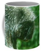 Close Up Of Mr Porcipine Coffee Mug