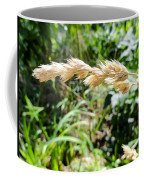 Close-up Of Prairie Grass Coffee Mug