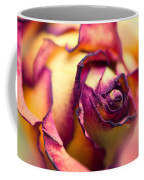 Close Up Of The Dry Rose Coffee Mug