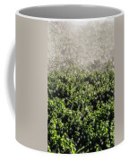 Close-up Of Water From A Sprinkler Coffee Mug