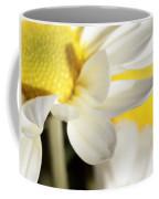 Close Up Of White Daisy Coffee Mug