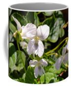 Close-up Of White Violets  Coffee Mug