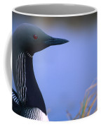 Close Up Portrait Of An Arctic Loon Coffee Mug