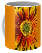 Close Up Yellow Orange Mum Coffee Mug