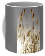 Closer To Home Coffee Mug
