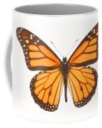 Closeup Of A Butterfly Coffee Mug