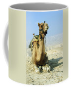 Closeup Of A Camel Coffee Mug
