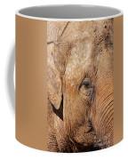 Closeup Of An Elephant Coffee Mug