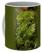 Closeup Of Moss And Lichen. Rhoen Coffee Mug