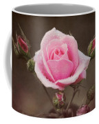 Clothed In Natures Jewels Coffee Mug