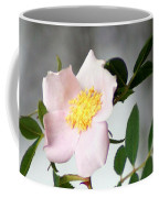 Cloud Mountain Cherokee Rose Coffee Mug