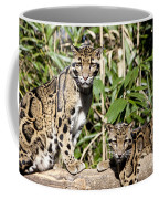 Clouded Leopards Coffee Mug