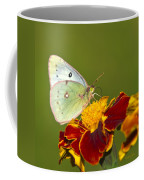 Clouded Sulphur Butterfly Coffee Mug