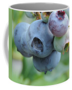 Clump Of Blueberries 2 Coffee Mug