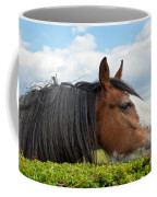 Clydesdale Horse Munching Coffee Mug