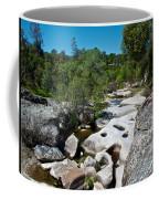Coarsegold Creek Bed In Park Sierra-ca Coffee Mug