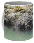 Coast Ecosystems Coffee Mug