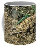 Coast Horned Lizard Coffee Mug