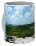 Coastal Aransas Nwr Coffee Mug