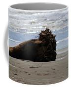 Coastal Driftwood Coffee Mug
