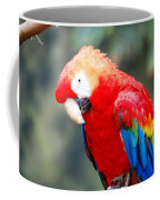 Coat Of Many Colors Coffee Mug