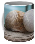 Cockle And Sea Urchin Coffee Mug
