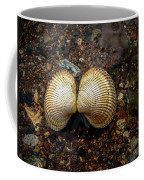 Cockle Coffee Mug