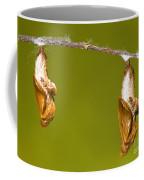 Cocooned Gulf Fritillary Butterflies Coffee Mug