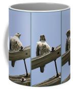 Cold Stare Coffee Mug
