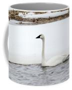 Cold Swim Coffee Mug