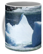 Cold Visitors  Coffee Mug