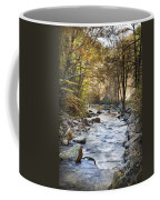 Cold Water Coffee Mug