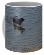 Cold Water Fetch Coffee Mug