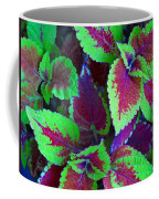 Coleus Color Coffee Mug