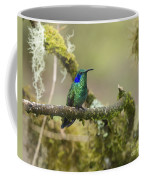 Colibri Thalassinus... Coffee Mug