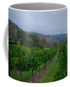 Colibri Vineyards Coffee Mug