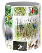 Collage Of Indigos 10 Coffee Mug