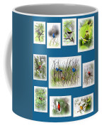 Collage Of Dauphin Island 22 Coffee Mug