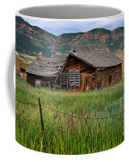 Collapsed Log House In Utah Coffee Mug