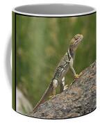 Collard Lizard Coffee Mug