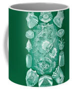 Collection Of Teleostei Coffee Mug by Ernst Haeckel