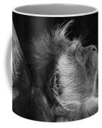 Colobus At Rest Coffee Mug